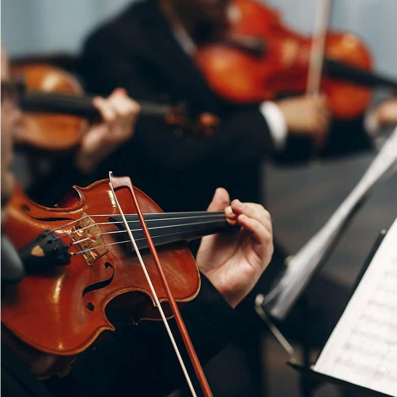 String Duos, Trios and Quartets